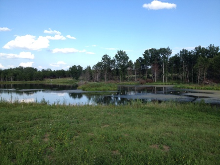 Similar view, July 2014.